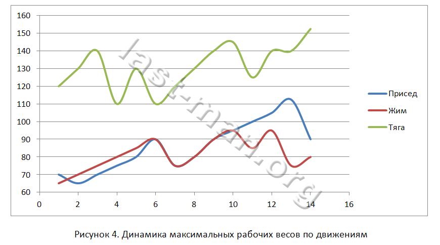 Динамика роста рабочих весов